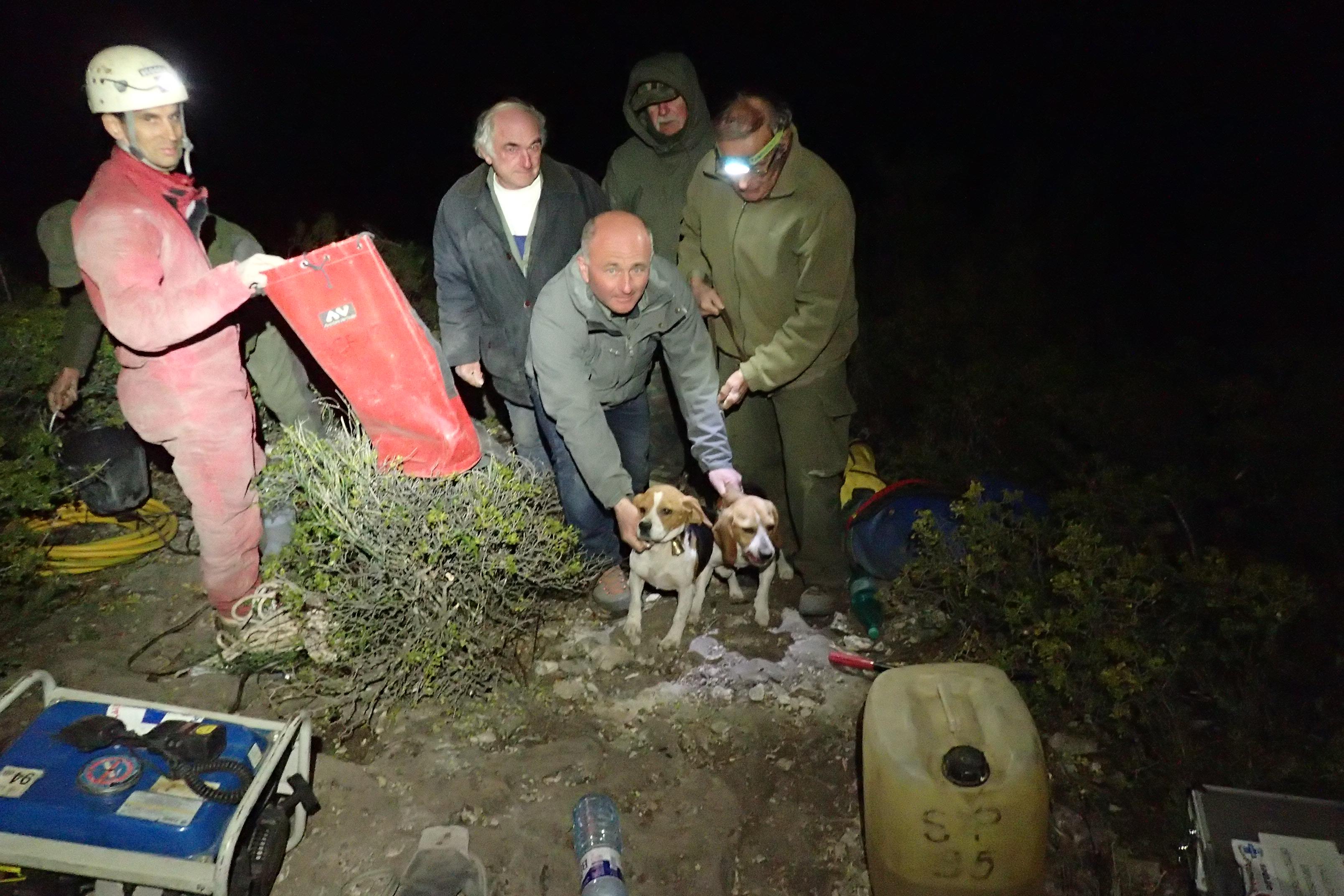 Secours chiens de chasse Pont de l'Etoile 02.2019